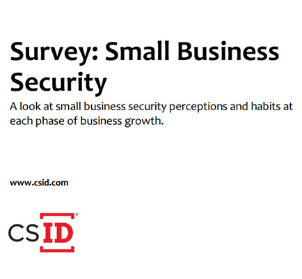 Survey: Small Business Security