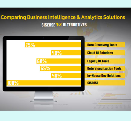 Comparing Business Intelligence & Analytics Solutions