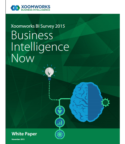 Xoomworks BI Survey 2015 Business Intelligence