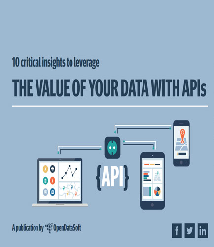 10 Critical Insights into Application Programming Interface to Leverage the Value of Your Data