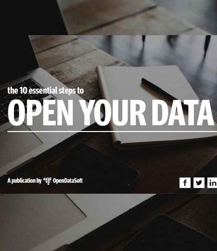 The 10 Essential Steps to Open Your Data