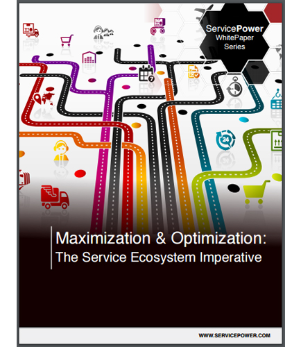 Maximization & Optimization: The Service Ecosystem Imperative