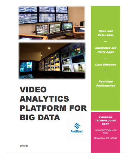 Video Analytics Platform for Big Data