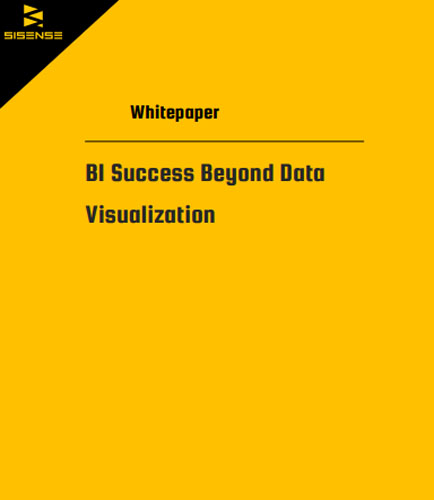 BI Success Beyond Data Visualization