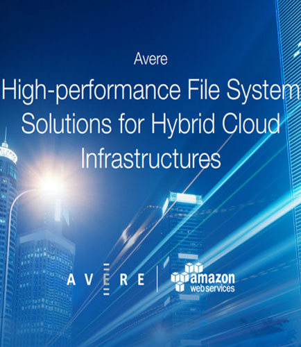 High-performance File System Solutions for Hybrid Cloud Infrastructures