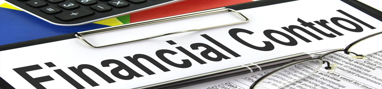 Financial Controls Best Practices for Managing your Business