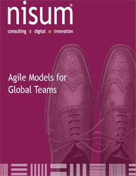 Agile Models for Global Teams