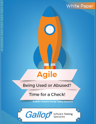 How to Implement Agile Development Methodology?