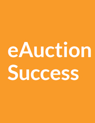 How to Successfully Run eAuctions (Electronic Auctions)