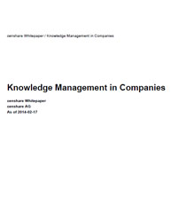 Knowledge Management in Companies