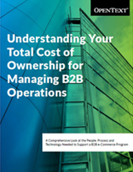 Understanding Your Total Cost of Ownership for Managing B2B Operations