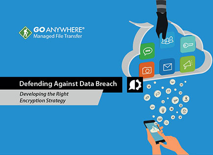 Defending Against Data Breach