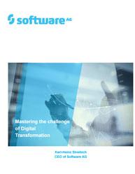 Mastering the challenge of Digital Transformation