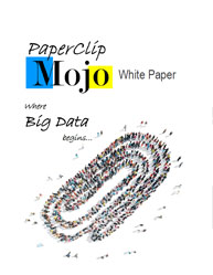 Big Data Technology White Paper